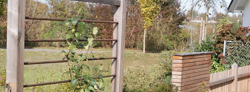 bepflanzter sichtschutz windschutz f r terrasse und. Black Bedroom Furniture Sets. Home Design Ideas