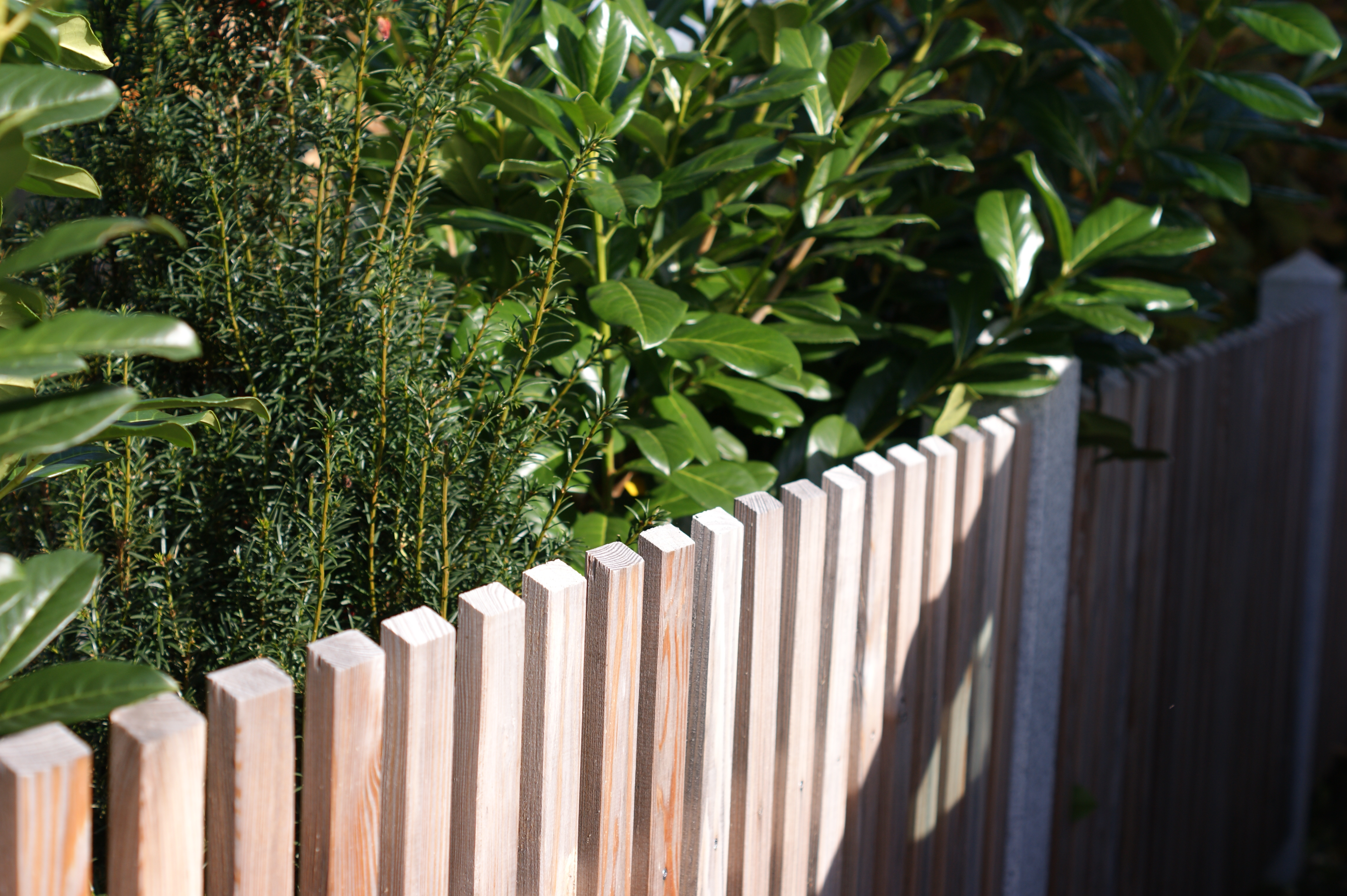 Gartentor Aus Holzlatten 04 21 10 EgeNis Inspirierend